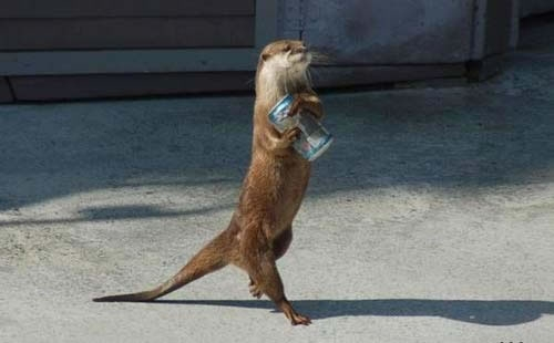 otter recycling can